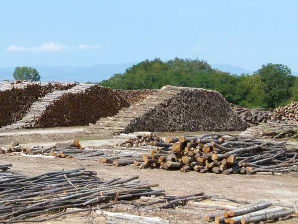 Trockungslager Kastanienholz aus dem die Staketenzäune gefertigt werden