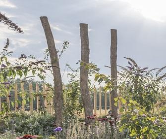 Robinienstämme als Dekoration im Garten