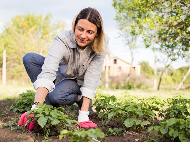 Frau im Gemüsegarten