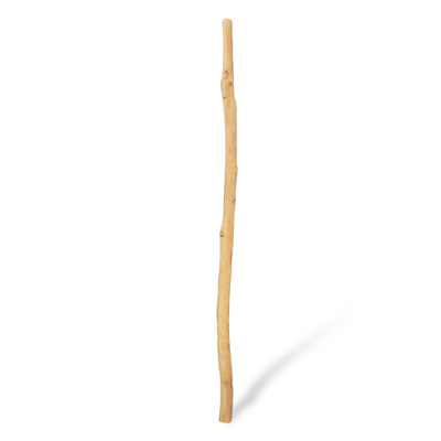 Robinienstamm 5 m lang