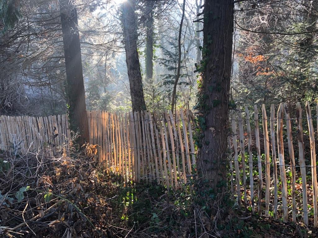 Staketenzaun aus Kastanienhholz als Grundstücksgrenze.