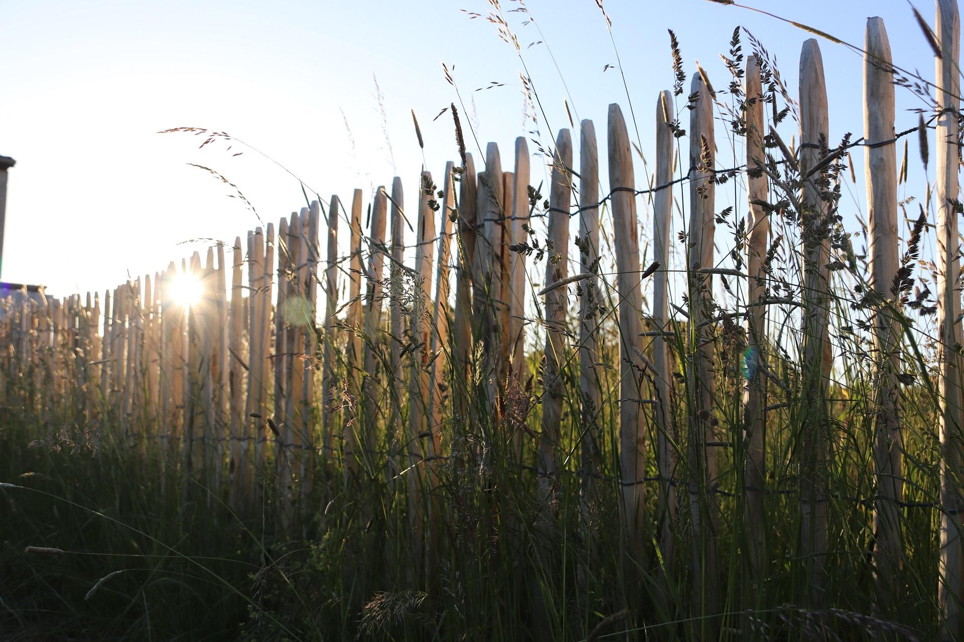 Staketenzaun aus Edelkastanienholz grenzt Grünstücke stilvoll ab.